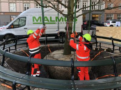 Coronavirus i Danmark: En særlig situation kræver en særlig indsats