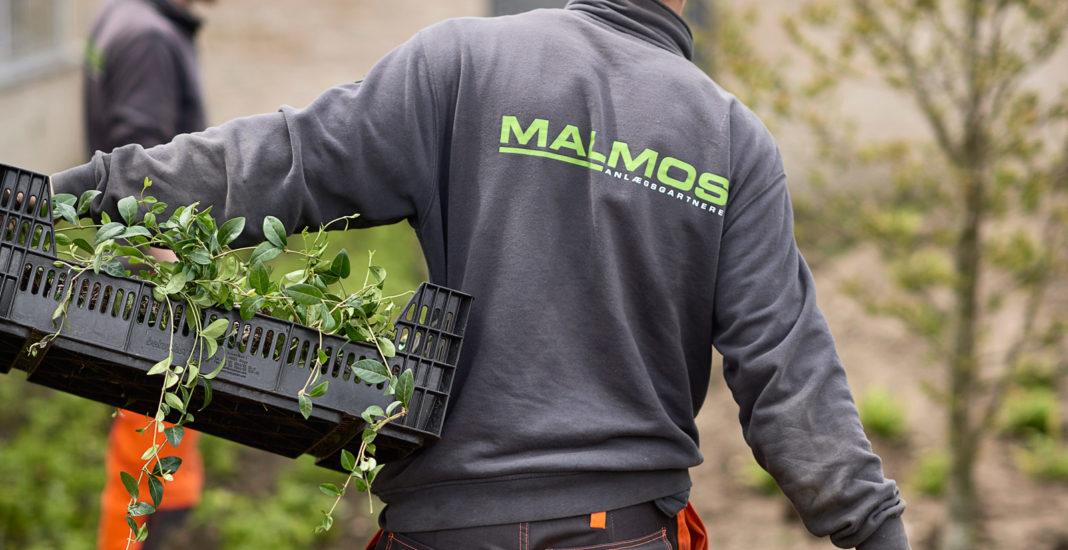 Grønne anlægsgartnere søges